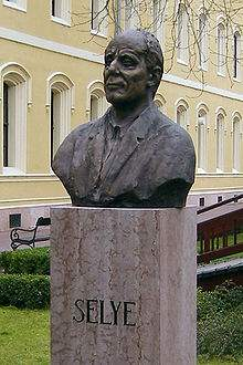 Bust of Hans Selye at Selye János University, Komárno, Slovakia