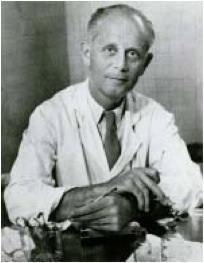 Hans Selye 1907-1982