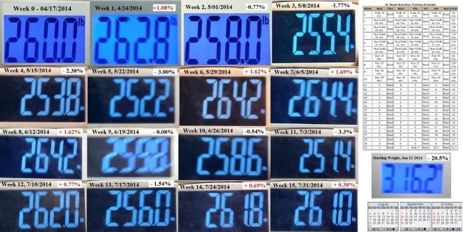 Week n - 2nd 12 Week Session Week 15 - Copy